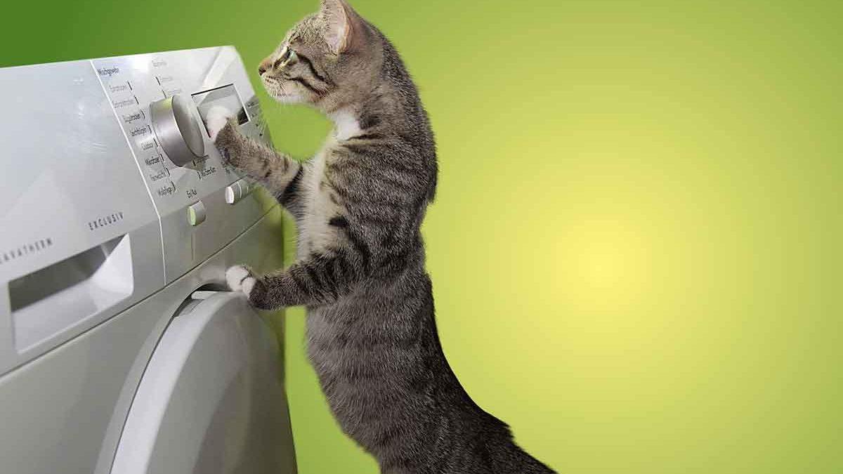 consejos para ahorrar energía con tu lavadora y secadora